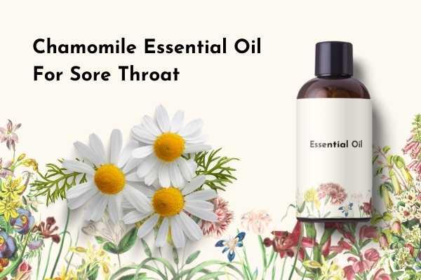 Chamomile Essential Oil for Sore Throat