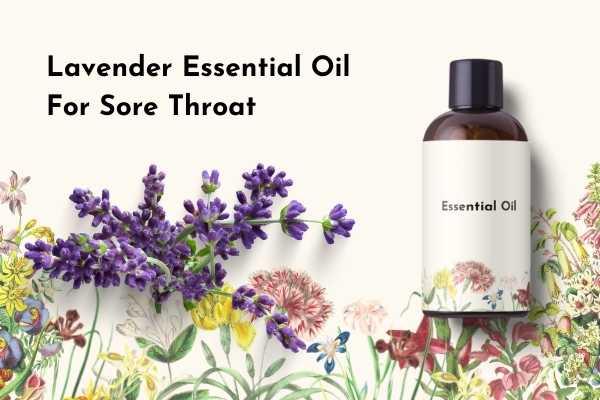 Lavender Essential Oil for Sore Throat